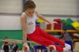 US Roncq Gym IMGP2182
