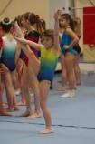 US Roncq Gym IMGP0140